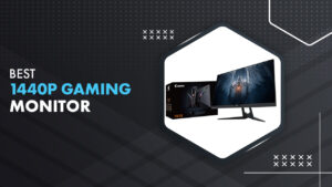 12 Best 1440P Gaming Monitor in 2021