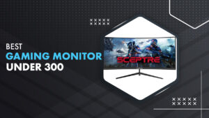 10 Best Gaming Monitors Under $300 in 2021